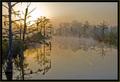 Misty Sunrise on Town Creek