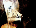 Copyrighted_Image_Reuse_Prohibited_681990.jpg