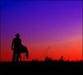 Happy Trails Cowboy ( Tribute to Sean Matos, AKA JawnyRico)