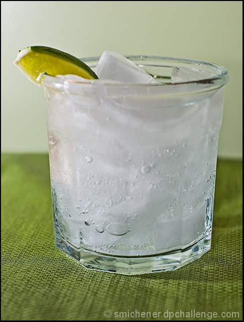 Cool and Refreshing (Gin & Tonic)