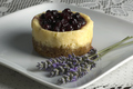 Miniature Blueberry Cheesecake