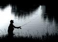Morning Angler