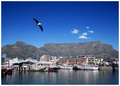 Postcard: Cape Town Harbour, South Africa