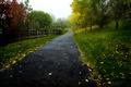 The Peaceful Suburban Bike Path