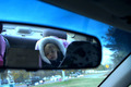 what's in your rearview
