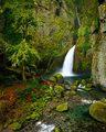 Wahclella Falls Columbia River Gorge