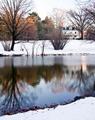 On Winter's Pond
