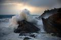 The Sea's Fury