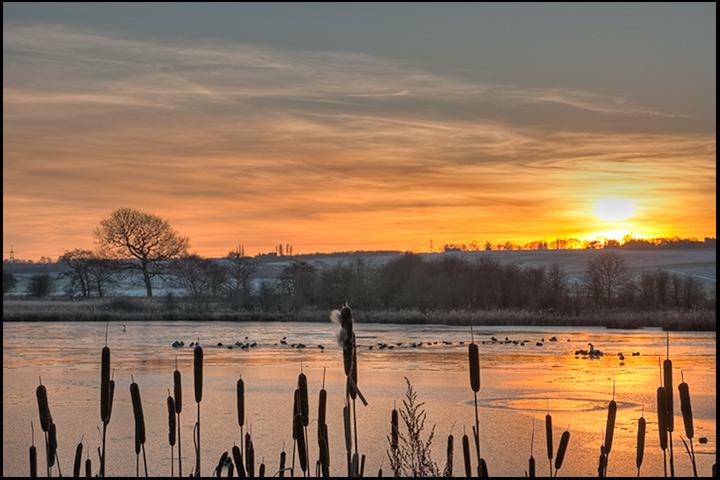 Sunset on the frozen pond