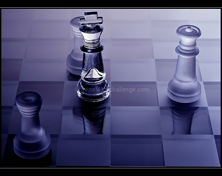 Black is checkmated (Fill the Frame III, 2007, ID=574419)