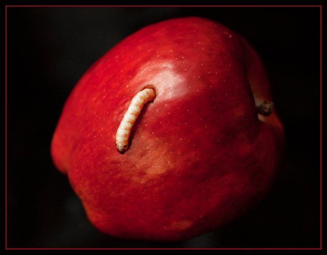 ... than finding a worm in your apple, that is finding half a worm in it