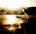 Copyrighted_Image_Reuse_Prohibited_787100.jpg
