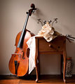 Still Life with Cello