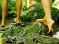 Barefoot Buddies