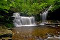 Welcoming Summer at the Falls