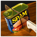 I *DON'T* Like Spam!!!