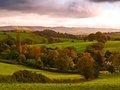 Nettlecombe