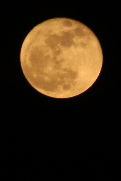 Cold January Moon RIsing