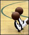 Basketball Spin Platforms