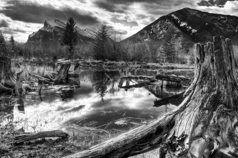 Vermilion Lakes in Spring