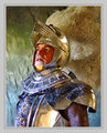 Reflecting Knight