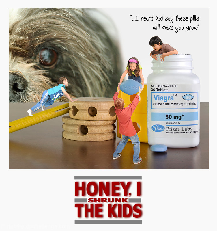 HONEY, I SHRUNK THE KIDS 2