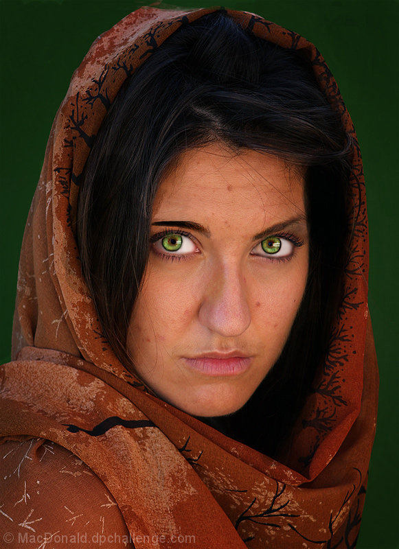 National Geographic Afghan Girl Tribute