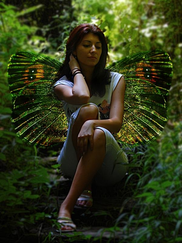 Modern Day Fairy