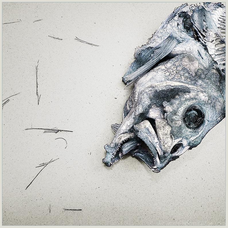 Cod is dead.   -Nietzsche