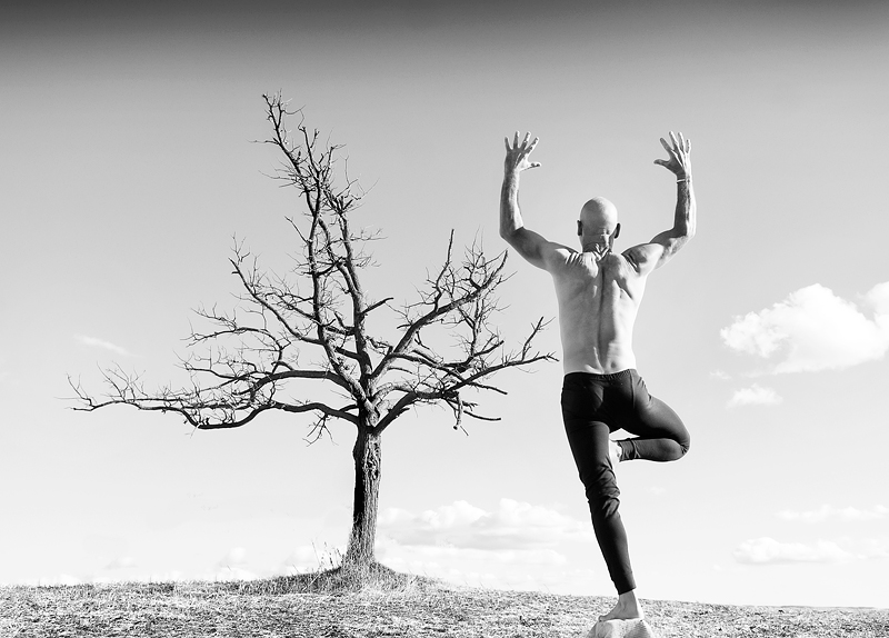 Vrksasana and an  Old Tree