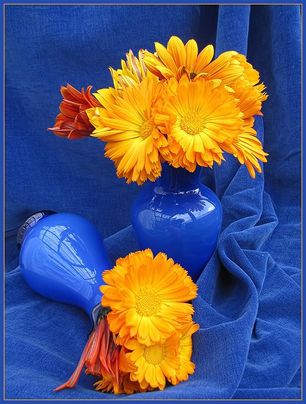 Orange and Blue on Blue.