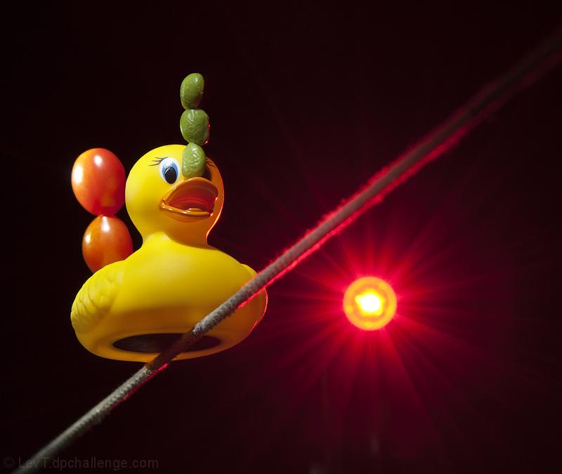 Duckuilibristics