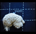 Lessons in Photography Page 87 Figure 8b: Rule of Thirds with Canine