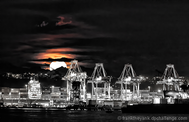 Moonrise over the Harbor