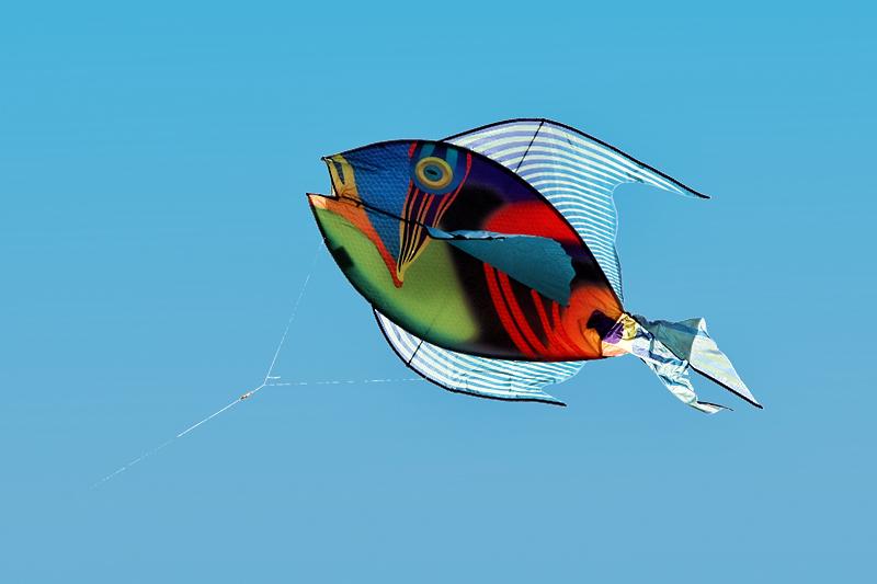 cool kites car interior design