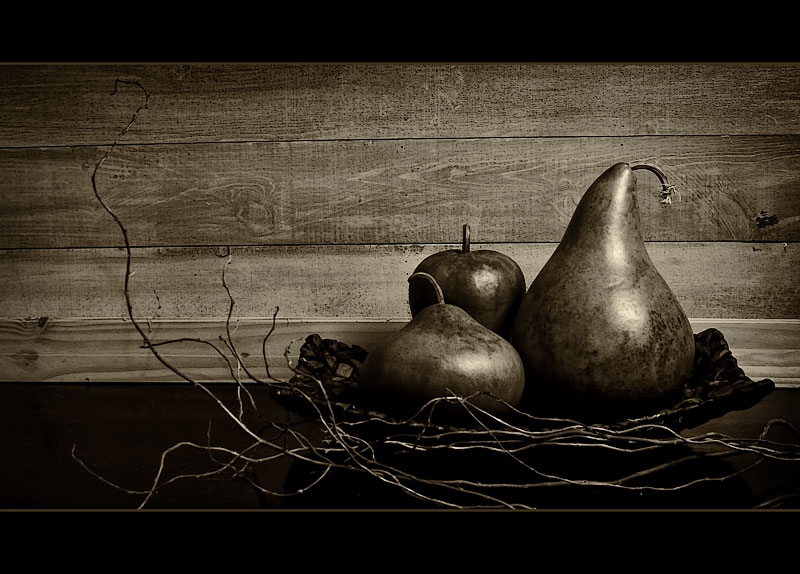 Still Life in Sepia