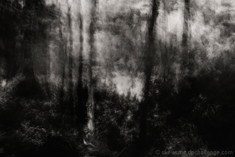realm of the vengeful woodsprite