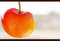 Cherries from Chelan