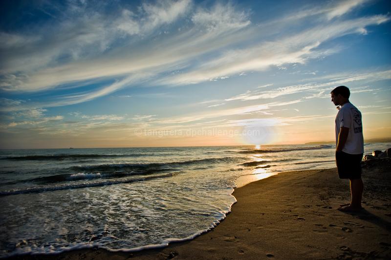 Coastal Contemplation