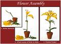 Flower Assembly 101