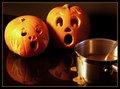 """pumpkins in puree horror"""