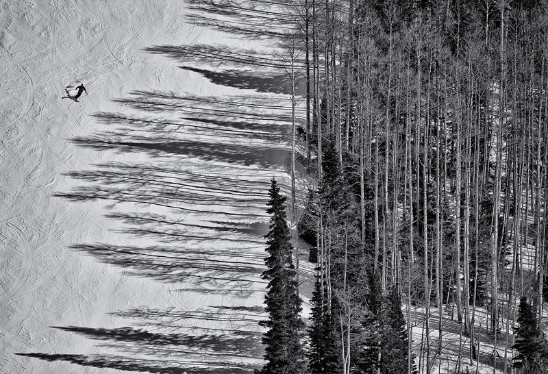 Skiing the Treeline