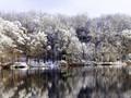 Silent snowscape