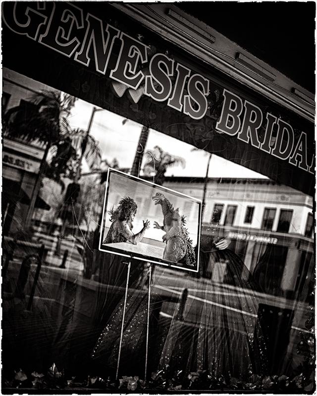 bridezillas welcome