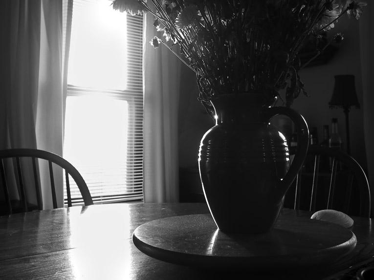 Still life at dawn w/quahog shell