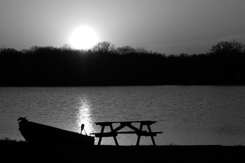 Sunlight Serenade