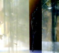 Copyrighted_Image_Reuse_Prohibited_1010614.jpg