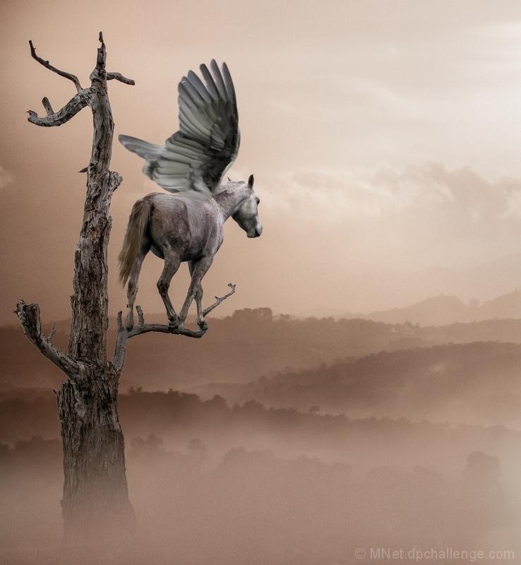 Pegasus in the Wasteland