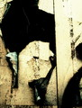Copyrighted_Image_Reuse_Prohibited_1020177.jpg