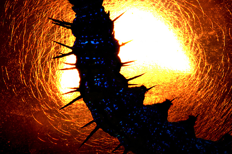 Solar Cocoon